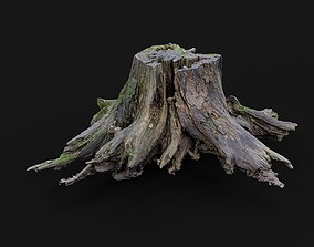 game-ready 3d scanned tree stump PBR