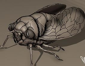 3D model grease pencil cicada bug