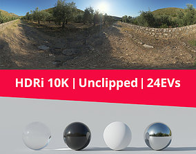 3D model HDRI - Trail Trees And Mountains