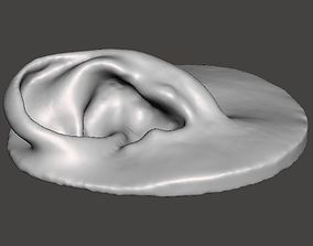 science 3D printable model Real human ear anatomy