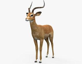 3D Impala HD