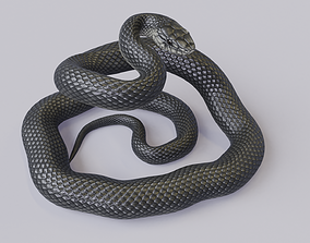 Black Mamba Rigged 3D model