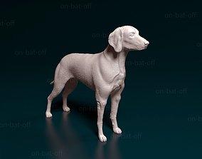 3D printable model Weimaraner