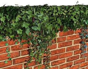 3D model Ivy wall