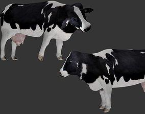 Dairy Cow 3D asset