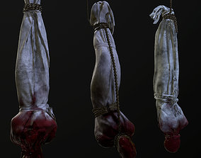 Cloth corpse 3D model