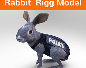 rigged 3D Police rabbit rigged low poly model