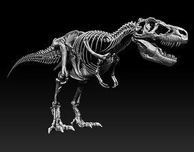 SubTyrannosaurus Rex Full Skeletons - SubREX 3D model