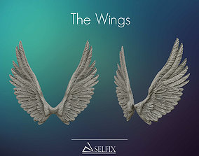 Wings ready for 3D print and useful in design sculptures