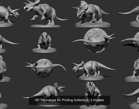 3D Triceratops for Printing Collection