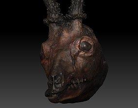 Skinned Deers Head High Detail Scan With Texture 3D model