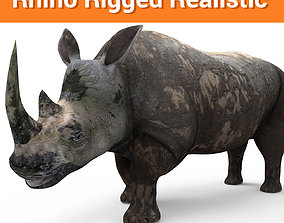 rigged 3D Dirty Rhino Model Rigged game ready
