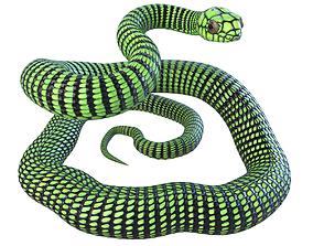 3D model realtime Animated Boomslang Snake