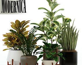 Plants collection 75 Modernica pots 3D