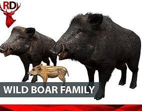 Wild boar family 3D model