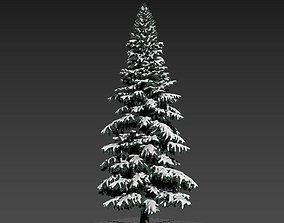 tree1 3D