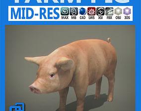 3D Farm Pig