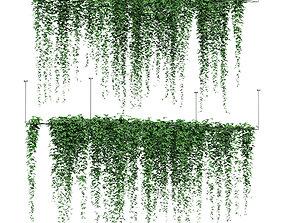 Ivy hanging on grid for ceiling - 2 models