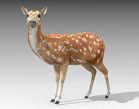 3D model animated Female Deer