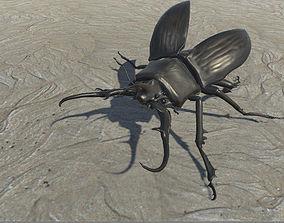 3D model rigged Monster beetle