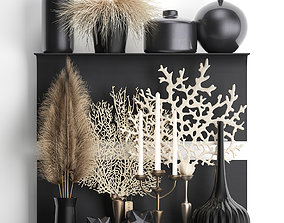 3D Decorative shelf with coral and reeds