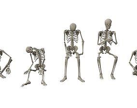 Skeleton Sitting Poses 3D model game-ready