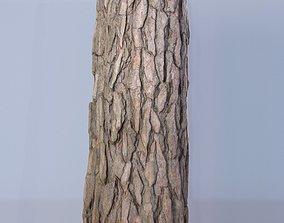 Scan - Tree log 04 3D model