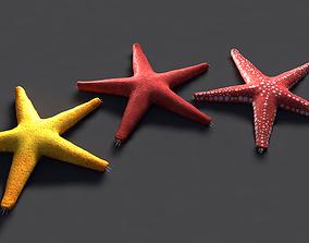 3D asset Red Star Fish