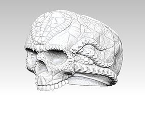 Ring Skull Biomechanics STL 3d model