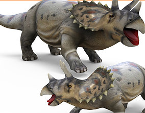 Wild Triceratops Rigged 3D Model rigged