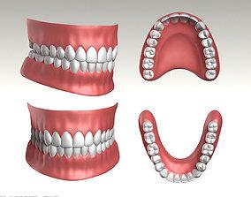 Highpoly Human Teeth set 3D