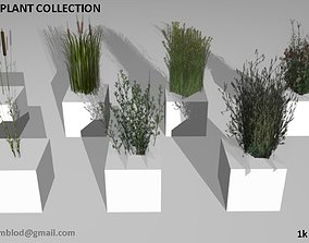 Low poly plants and grass 3D model