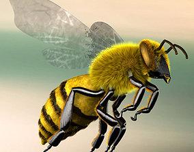 3D model A lovely Bee
