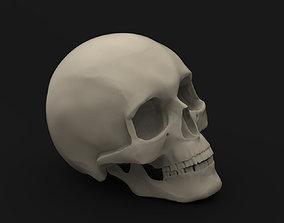 Skull 2 3D print model