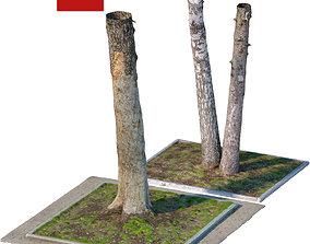 3D model Wood 200