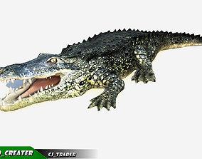 animated LowPoly Crocodile Beast Rigged 3d model