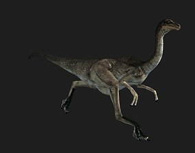 3D model realtime Animated Gall Dinosaur
