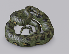 3D asset Rigged Green Anaconda