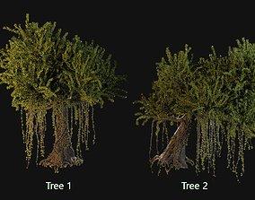 Kapok Trees 3D