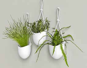 3D PLANTS 17