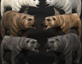 Bear Megapack 3D model emaciated