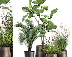 Houseplants in a rust flowerpot for the interior 997 3D