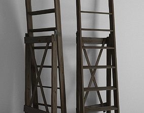 3D model Ladder parts