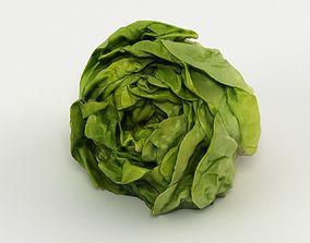Salad 001 3D model