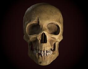 Dirty Skull PBR 3D asset