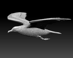 Seagull 3D printable model