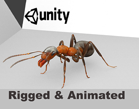 animated Ant 3D Model Animated and Rigged