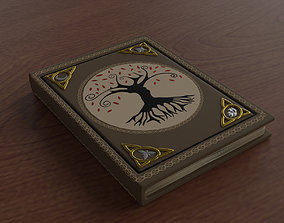 3D asset Old Spell Book