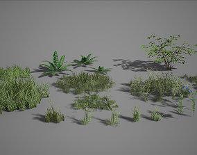 3D asset UE4 - Forest Foliage