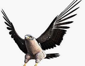 3D Rigged Peregrine Falcon